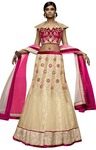 Beige Net Wedding Lehenga Choli