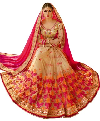 Beige and Crimson Half N Half Net Saree