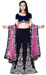 Navy Blue Embroidered Lehenga Choli