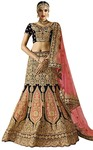 Embroidered Dark Brown Velvet Lehenga Choli