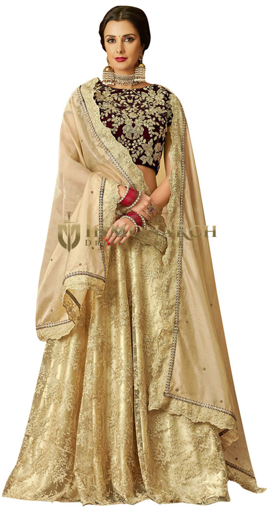Beige Net Thread and cord embroidery Lehenga Choli