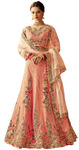 Raw Silk net embroidered lehenga